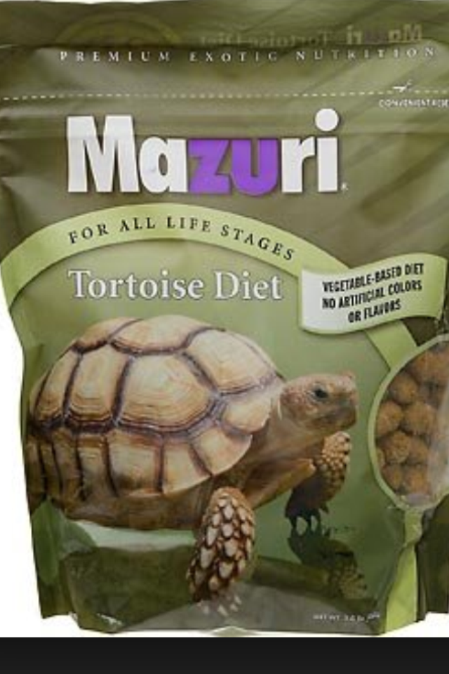 Is Grassland Tortoise Food Good